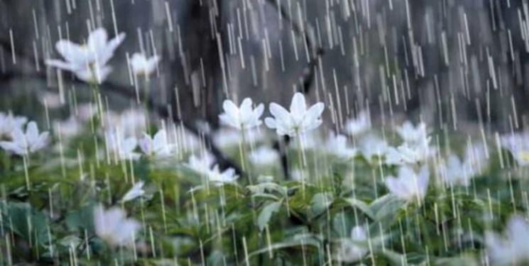 بارش باران در بسیاری از نقاط کشور/ ورود سامانه بارشی تازه از 28 اسفند