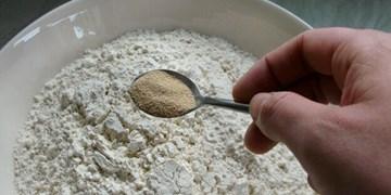 صادرات بیش از 2 میلیون دلار خمیرمایه به خارج از کشور