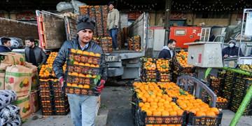 کدام یک در ماجرای فاسد شدن 100 هزار تن میوه مقصرتر هستند؟/ دلالان یا مسؤولان ۲ وزارتخانه