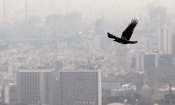 آلودگی هوا در تهران طی 24 ساعت گذشته