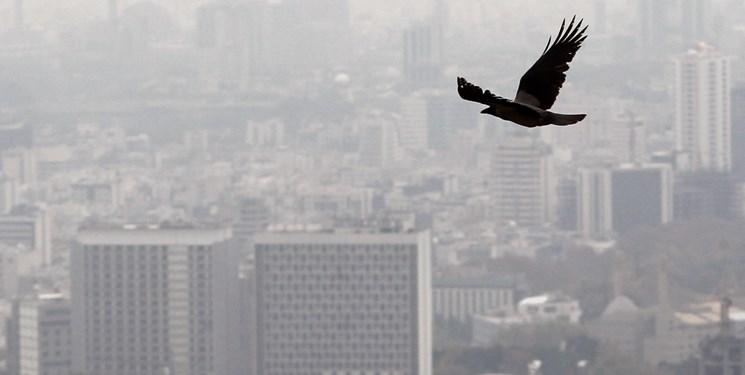 تداوم آلودگی هوا به دلیل افزایش غلظت ازن در تهران