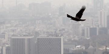 هوای تهران آلوده است/ تعداد روزهای پاک پایتخت