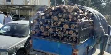 دستگیری سوداگران چوب در ورامین