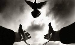 آزادی ۱۱ زندانی از ندامتگاه دماوند