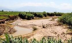 پرداخت غرامت به کشاورزان آسیبدیده در سیل