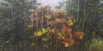 پیش بینی کاهش دما در البرز/بارش پائیزی آغاز میشود