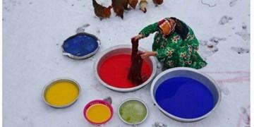 کسب مدال طلای جشنواره بینالمللی عکس قرقیزستان توسط  عکاس ارسبارانی