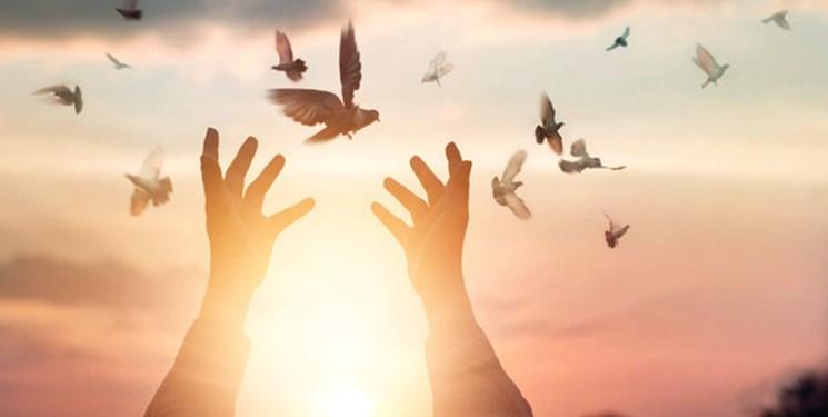 آزادی ۲۲ نفر از زندانیان جرائم غیر عمد در همدان