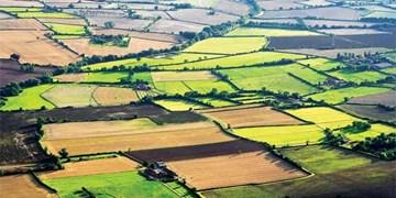 الزام دولت به اجرای کامل طرح ملی «حدنگار» طی دو سال با مشارکت کشاورزان