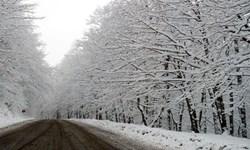 برف و باران در کشور و موج سرما از جمعه/ آسمان تهران چهار روز آینده برفی است
