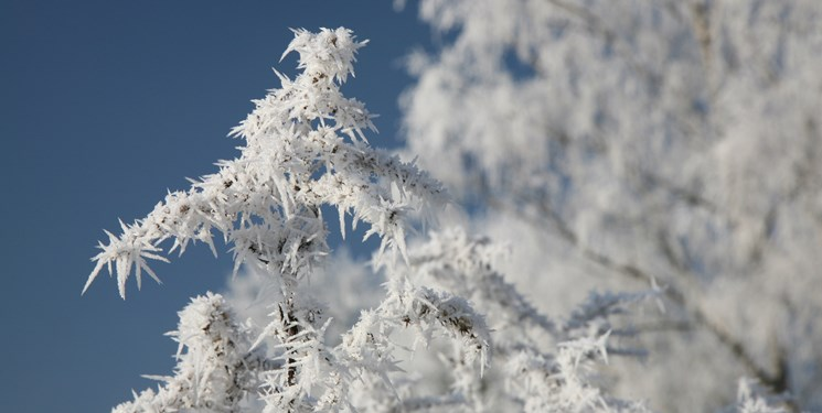 کاهش دما تا 10 درجه در شمال شرق کشور/یخبندان در 11 استان