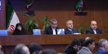 سعیدی: اختلافات در تیراندازی شخصی نیست/شاید قبل از پاییز مرحله آخر بودجه پرداخت شود