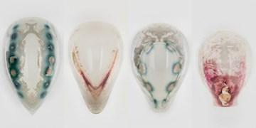 تولید نقاب های سه بعدی با میکروب های قابل برنامه ریزی