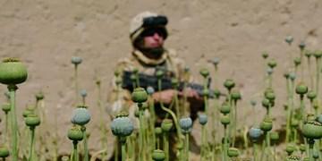 مسکو: نیروهای اطلاعاتی آمریکا در افغانستان مواد مخدر  قاچاق می کنند