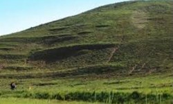 فارس من| تاکنون تقاضایی از سوی شهرداری قوچان برای محوطهسازی تپه تاریخی نادری ارائه نشده است