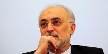 علی اکبر صالحی درگذشت شهیدی محلاتی را تسلیت گفت