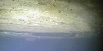 عکس برداری ربات زیردریایی از عمق قطب جنوب