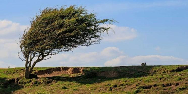 افزایش سرعت باد/ هشدار سطح نارنجی هواشناسی استان اردبیل