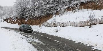 بارش برف در جاده چالوس/جاده لغزنده است