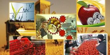صندوق خرد زنان روستایی خورزان افتتاح شد