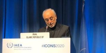 صالحی: اروپا نقش خود را در نجات برجام ایفا کند