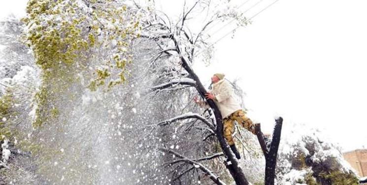 فوت دو گیلانی در حوادث مربوط به برف