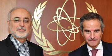 صالحی: گروسی در فرصت مناسب به ایران سفر میکند
