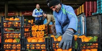 میوه شب عید زنجانیها ذخیرهسازی شد