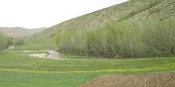 14 فقره پرونده متقاضیان اراضی ملی بررسی و تعیین تکلیف شد