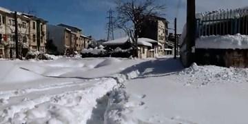 فیلم| مشکلات لاهیجانیها در سرمای شدید
