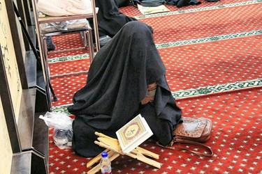 عکس| اربعین «حاج قاسم» در بندرعباس