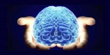 اثرگذاری شیوههای تولید محتوا و جنبههای آن بر مخاطب در علوم شناختی