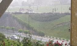 بارشهای پراکنده و رعدوبرق در برخی نقاط کشور/وزش باد در شرق و  گردوخاک در زابل از 13 مرداد