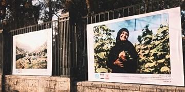 فرجام تلخ نمایشگاه عکسهای کارآفرینی + فیلم