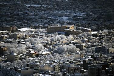 زیبائیهای برف زمستانی در «سنندج»