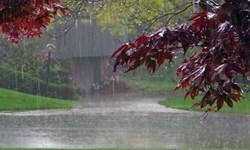 بارش شدید باران در استان آذربایجانشرقی از روز سه شنبه