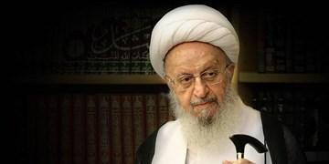 آیت الله امینی خدمات فراوانی را به نظام اسلامی ارائه کرد