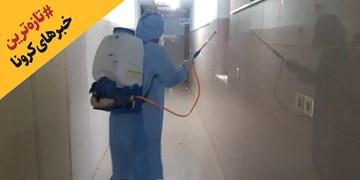 آخرین اخبار درباره کرونا|  بیانیه متخصصان طب سنتی درباره کرونا / معاینه اتباع خارجی در مرزهای ایران