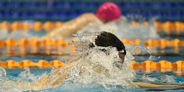 تغییر برنامههای فدراسیون جهانی شنا برای المپیک 2024