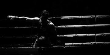 مسابقات بوکس جوانان جهان به تعویق افتاد