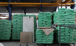 کشف ۲۴ میلیارد بذر سبزیجات و کود احتکاری در شهریار/ بیش از ۶۰۰ تن اقلام اساسی توزیع خواهد شد