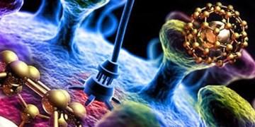 کشفیات تازه در مورد نابودی سلول های سرطانی با اسید چرب