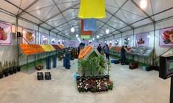 بازار میوه و تره بار ارم در شمال تهران نوسازی شد