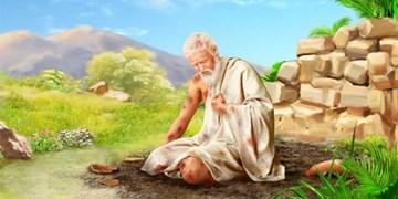 شرح جزء ۱۷ قرآن کریم| قصه حضرت ایوب و حضرت یونس (ع)