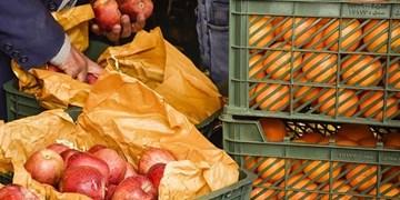 سیب تنظیم بازاری به  جای استفاده مردم در انبارها از بین میرود