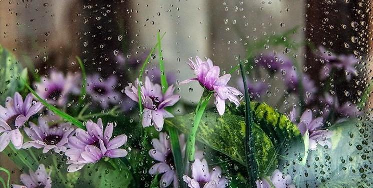 نفوذ سامانه سرد بارشی از عصر امروز در مازندران/دمای هوا 12 درجه کاهش مییابد