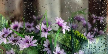 کاهش دما و تشدید بارشها در شمال/گردوخاک در نوار شرقی کشور