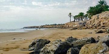 کشف 270 کیلوگرم مواد مخدر دپو شده در ساحل بندر ریگ