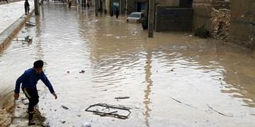 سیل جنوب بوشهر تلفات جانی نداشته است