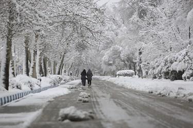برف زمستانی در« بهار » همدان